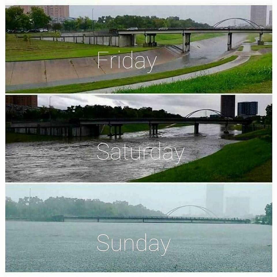 Hurricane Harvey | Ja'Nese Dixon